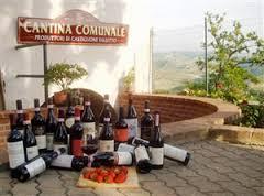 cantina-communale-di-castiglione-falletto