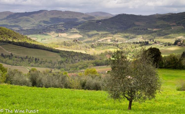 chianti-classico-landscape