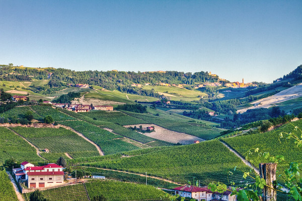 In the southern Langhe, with Monforte d'Alba in the one o'clock position