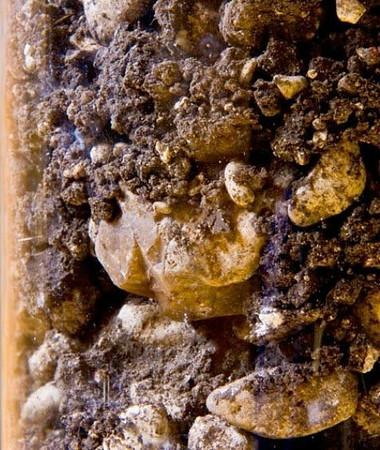 Acate soils